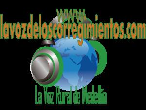 www.lavozdeloscorregimientos.com